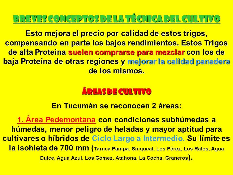 BREVES CONCEPTOS DE LA TÉCNICA DEL CULTIVO