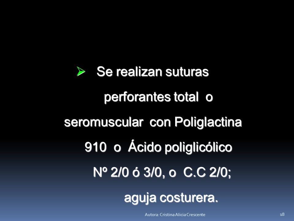 seromuscular con Poliglactina