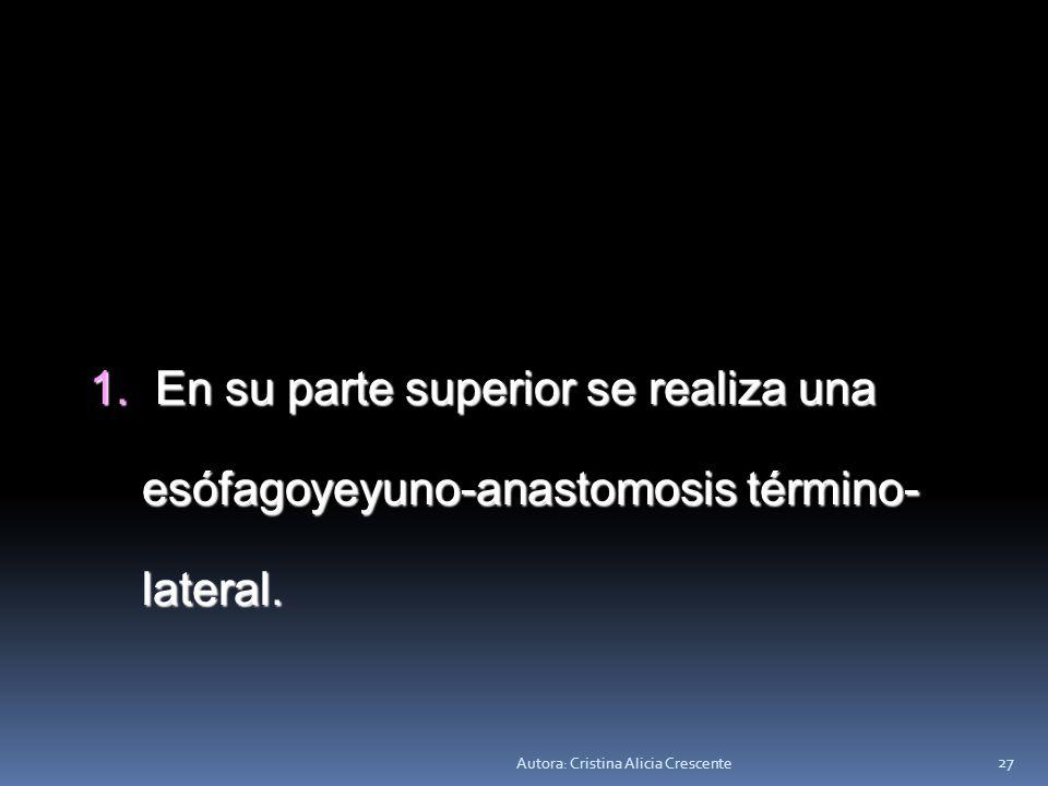En su parte superior se realiza una esófagoyeyuno-anastomosis término-lateral.