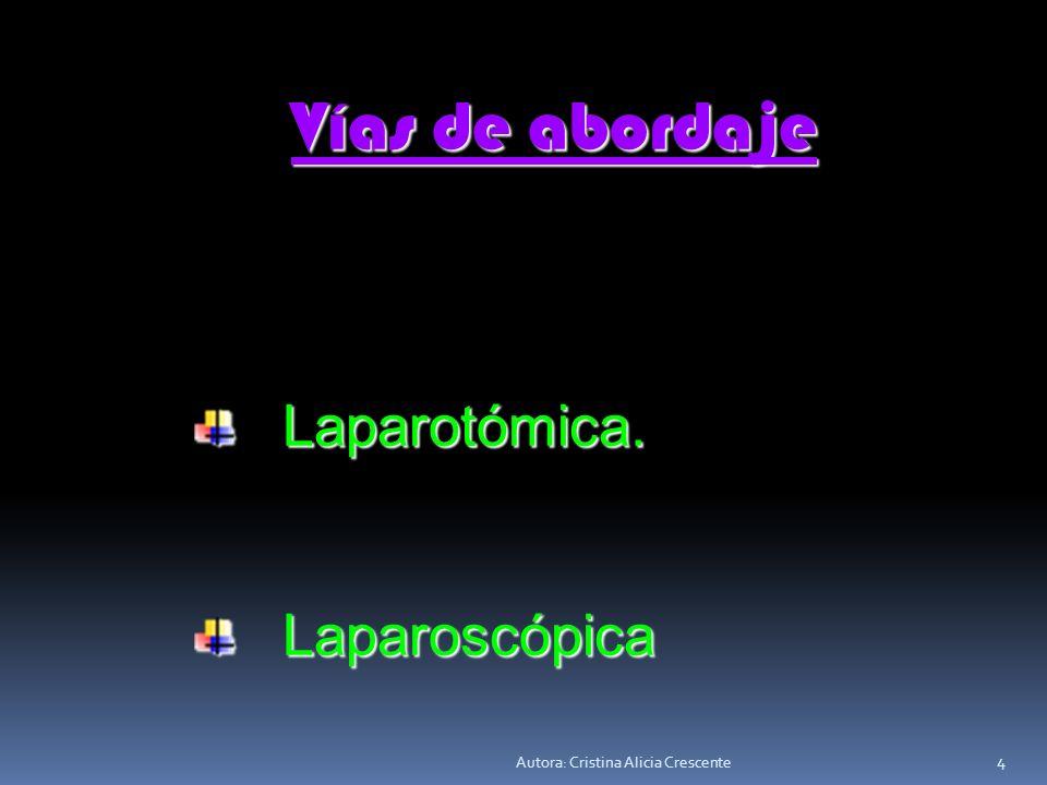 Vías de abordaje Laparotómica. Laparoscópica