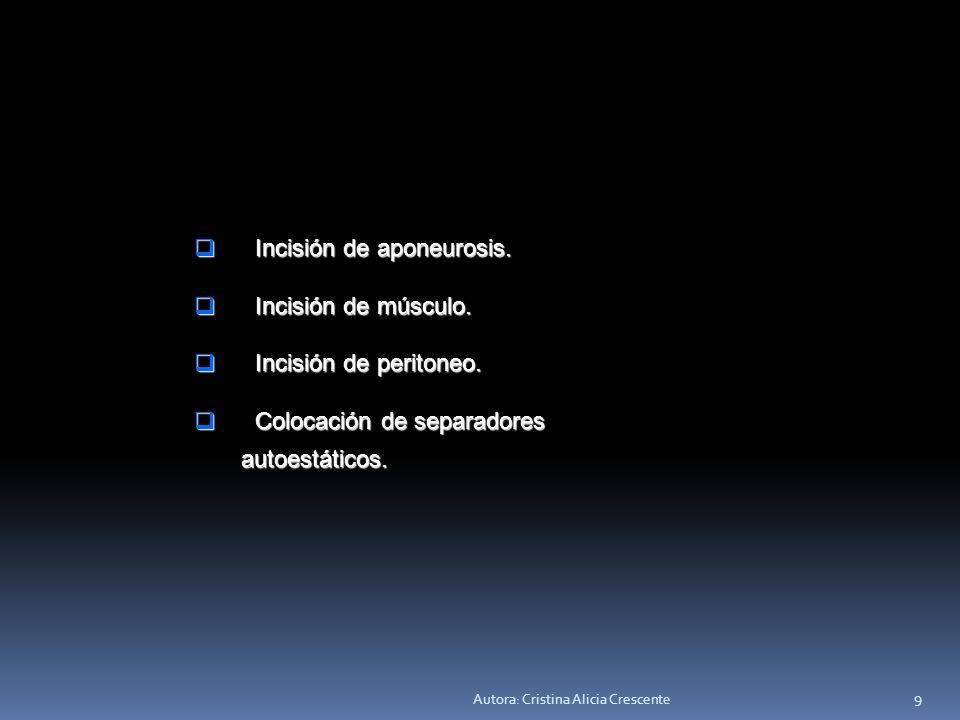 Incisión de aponeurosis. Incisión de músculo. Incisión de peritoneo.