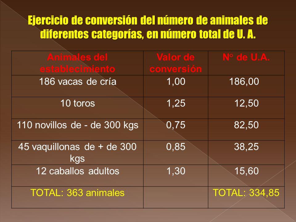 Animales del establecimiento