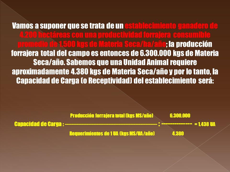 Requerimientos de 1 UA (kgs MS/UA/año) 4.380