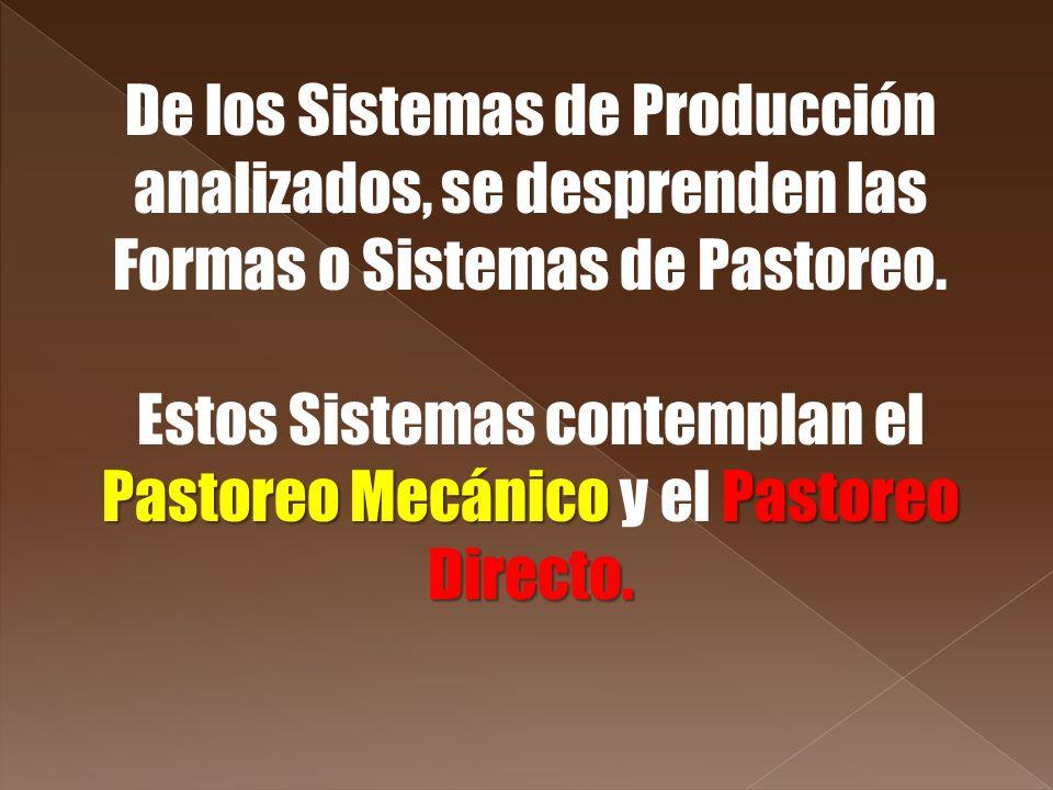 Estos Sistemas contemplan el Pastoreo Mecánico y el Pastoreo Directo.