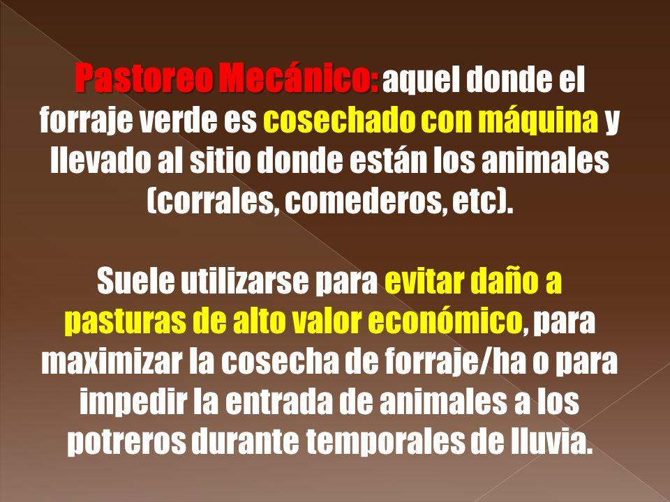 Pastoreo Mecánico: aquel donde el forraje verde es cosechado con máquina y llevado al sitio donde están los animales (corrales, comederos, etc).