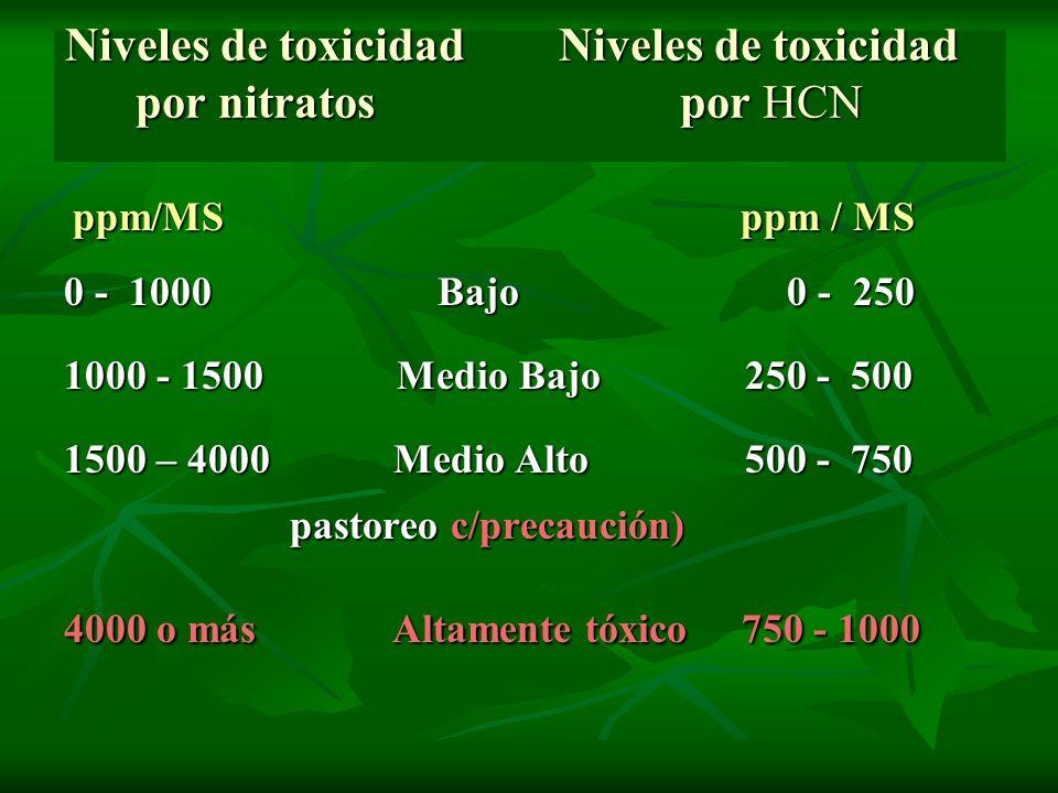 Niveles de toxicidad Niveles de toxicidad por nitratos por HCN