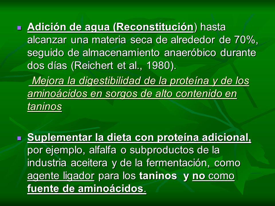 Adición de agua (Reconstitución) hasta alcanzar una materia seca de alrededor de 70%, seguido de almacenamiento anaeróbico durante dos días (Reichert et al., 1980).