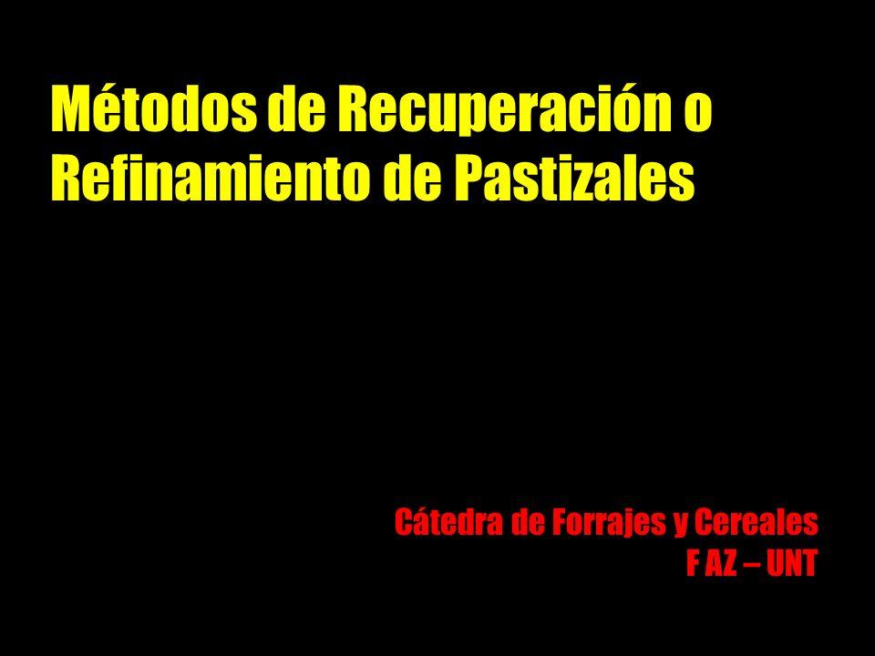 Métodos de Recuperación o Refinamiento de Pastizales