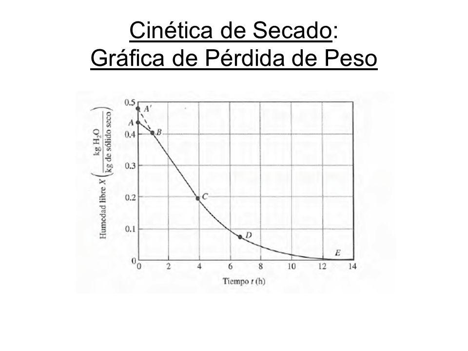 Cinética de Secado: Gráfica de Pérdida de Peso
