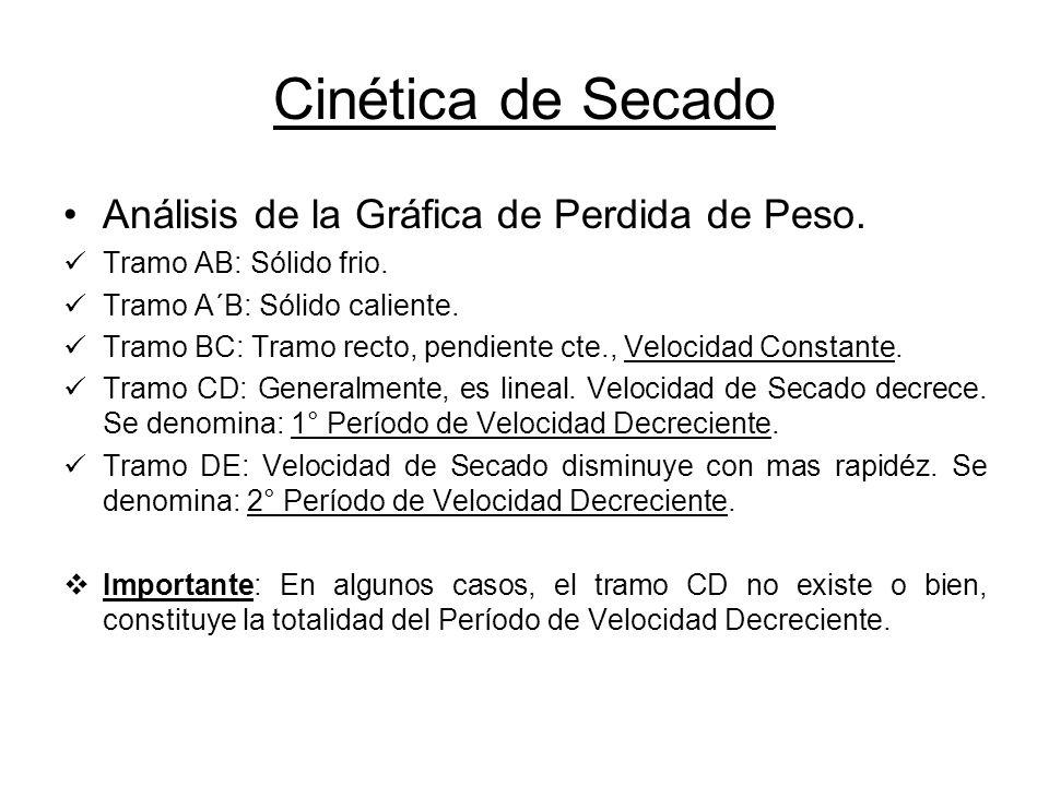 Cinética de Secado Análisis de la Gráfica de Perdida de Peso.