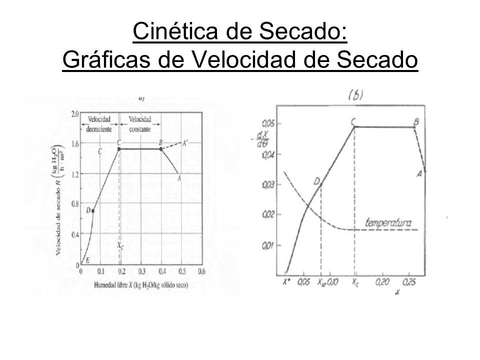 Cinética de Secado: Gráficas de Velocidad de Secado