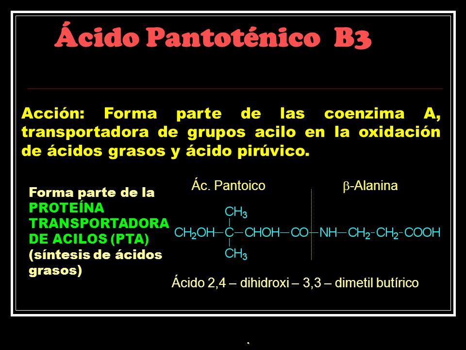 Ácido Pantoténico B3 Acción: Forma parte de las coenzima A, transportadora de grupos acilo en la oxidación de ácidos grasos y ácido pirúvico.