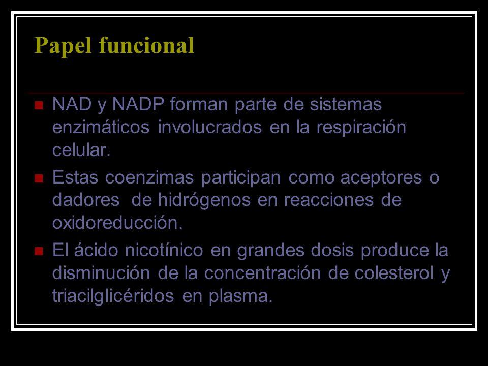 Papel funcionalNAD y NADP forman parte de sistemas enzimáticos involucrados en la respiración celular.