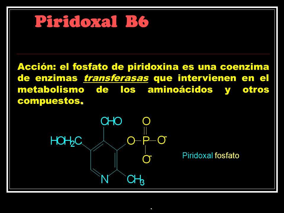 Piridoxal B6