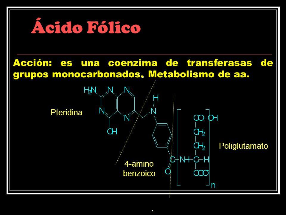 Ácido Fólico Acción: es una coenzima de transferasas de grupos monocarbonados. Metabolismo de aa. Pteridina.