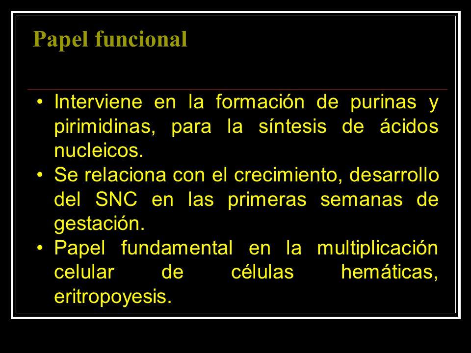 Papel funcionalInterviene en la formación de purinas y pirimidinas, para la síntesis de ácidos nucleicos.