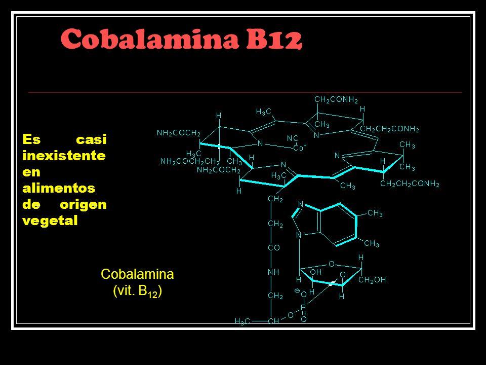 Cobalamina B12 Es casi inexistente en alimentos de origen vegetal