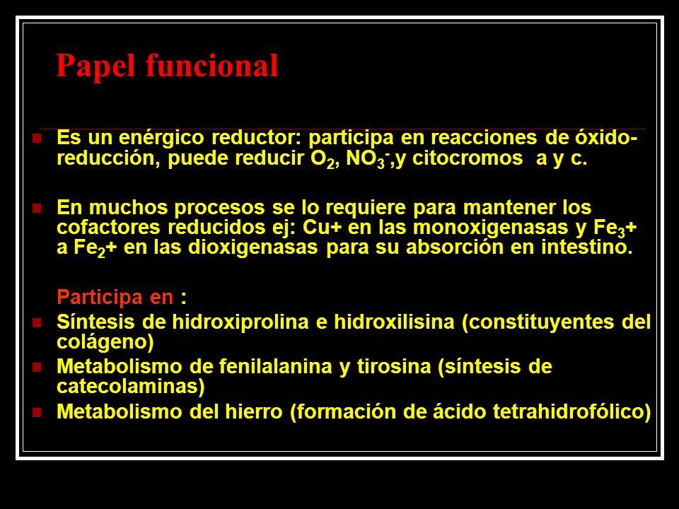 Papel funcional Es un enérgico reductor: participa en reacciones de óxido-reducción, puede reducir O2, NO3-,y citocromos a y c.