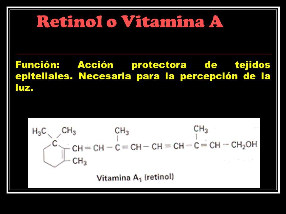 Retinol o Vitamina AFunción: Acción protectora de tejidos epiteliales.