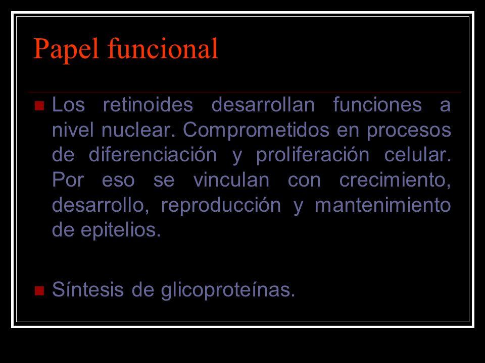 Papel funcional