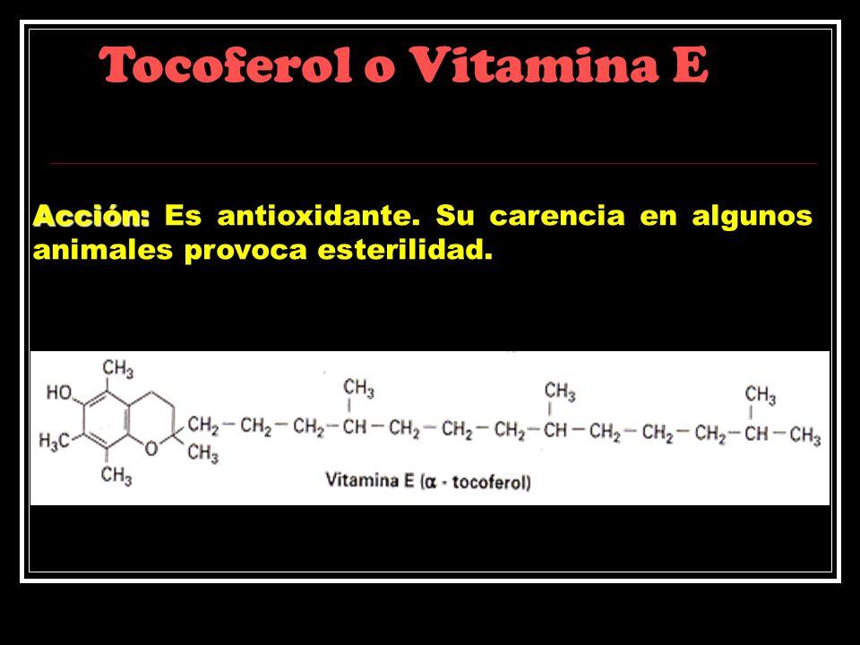 Tocoferol o Vitamina E Acción: Es antioxidante.