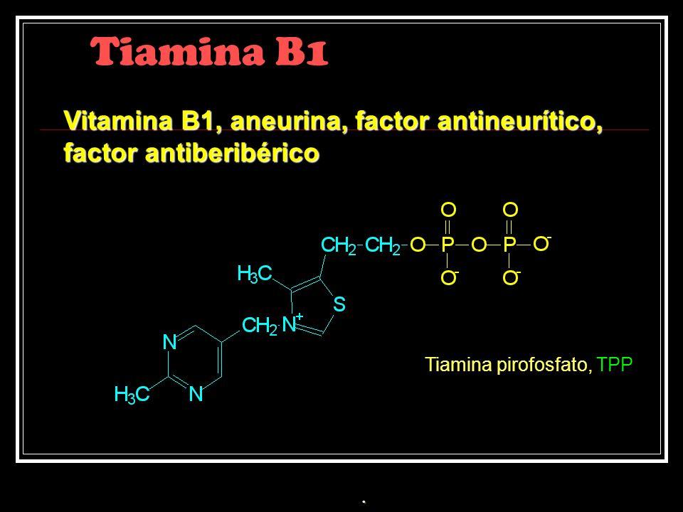 Tiamina B1 Vitamina B1, aneurina, factor antineurítico,