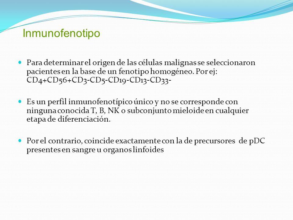 Inmunofenotipo