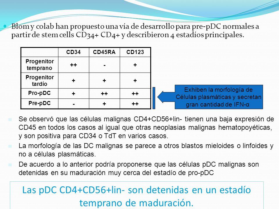 Blom y colab han propuesto una vía de desarrollo para pre-pDC normales a partir de stem cells CD34+ CD4+ y describieron 4 estadíos principales.