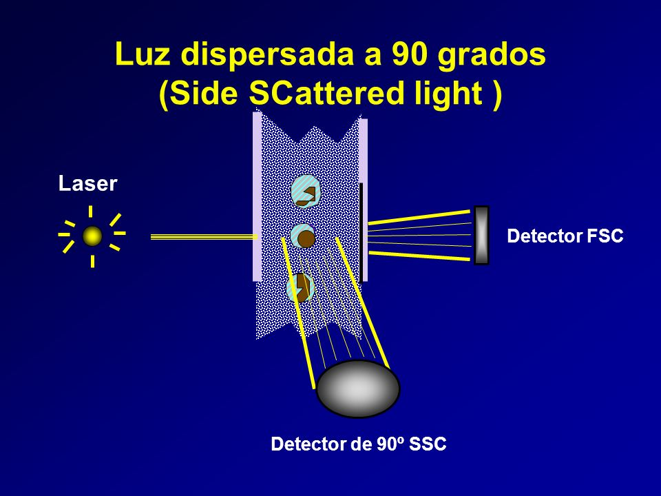 Luz dispersada a 90 grados (Side SCattered light )