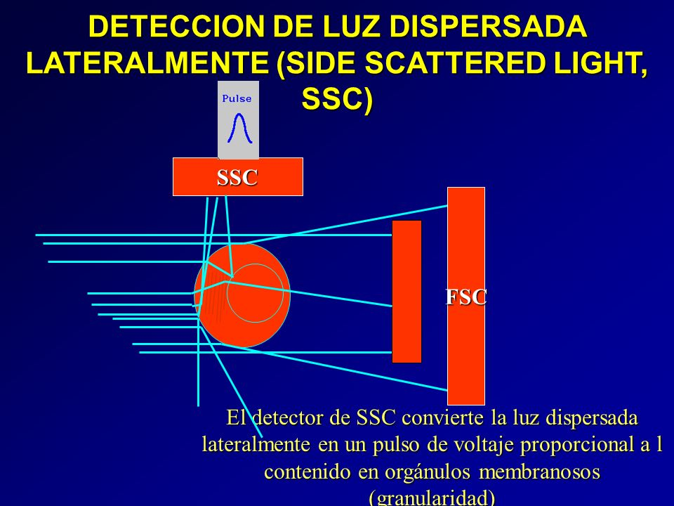 DETECCION DE LUZ DISPERSADA LATERALMENTE (SIDE SCATTERED LIGHT, SSC)