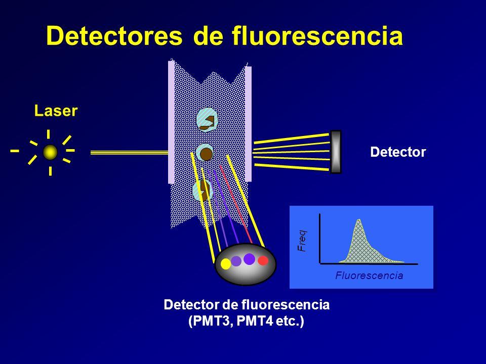 Detector de fluorescencia