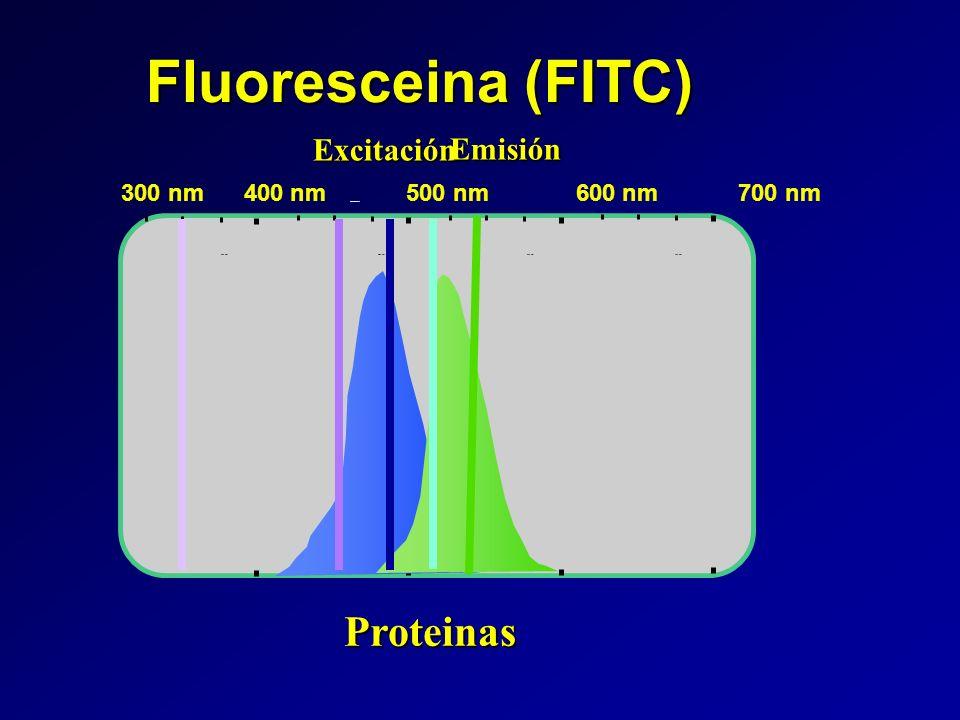 Fluoresceina (FITC) Proteinas Excitación Emisión