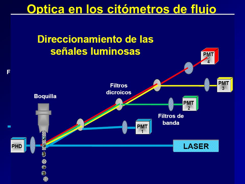 Optica en los citómetros de flujo