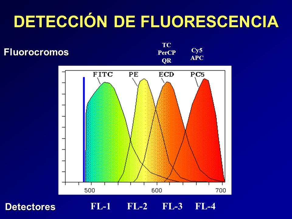 DETECCIÓN DE FLUORESCENCIA