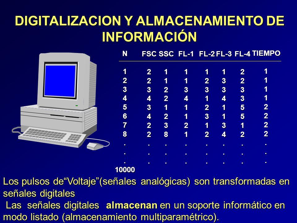 DIGITALIZACION Y ALMACENAMIENTO DE INFORMACIÓN