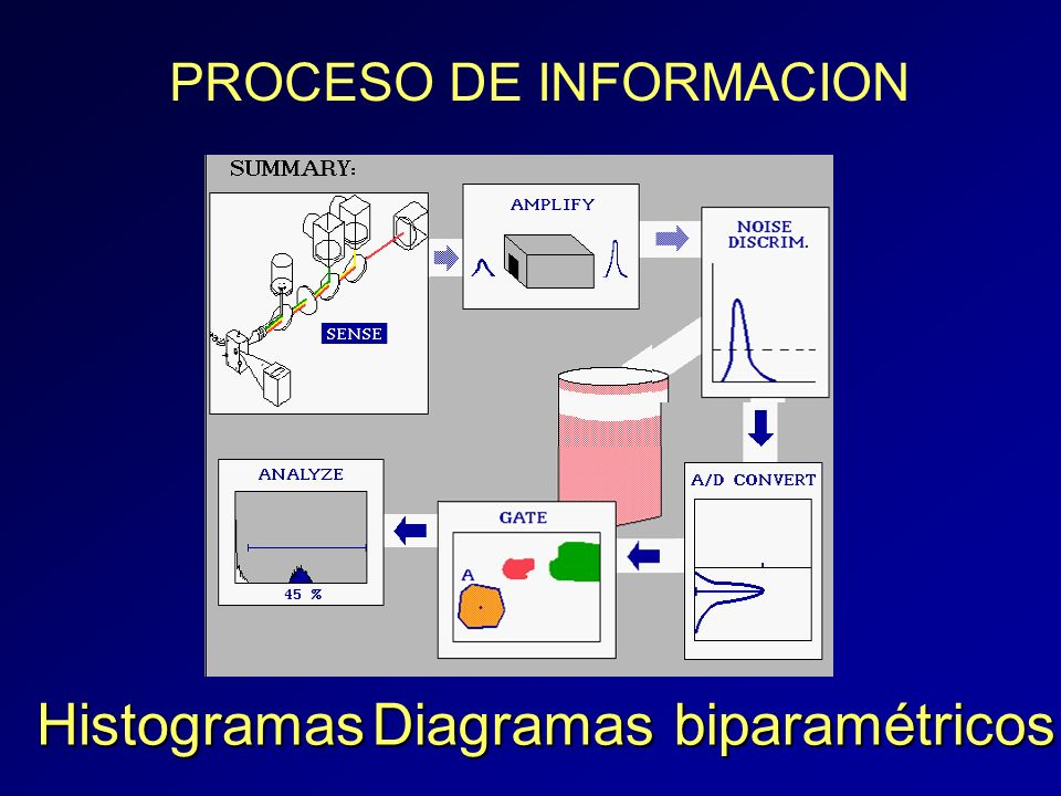 Diagramas biparamétricos