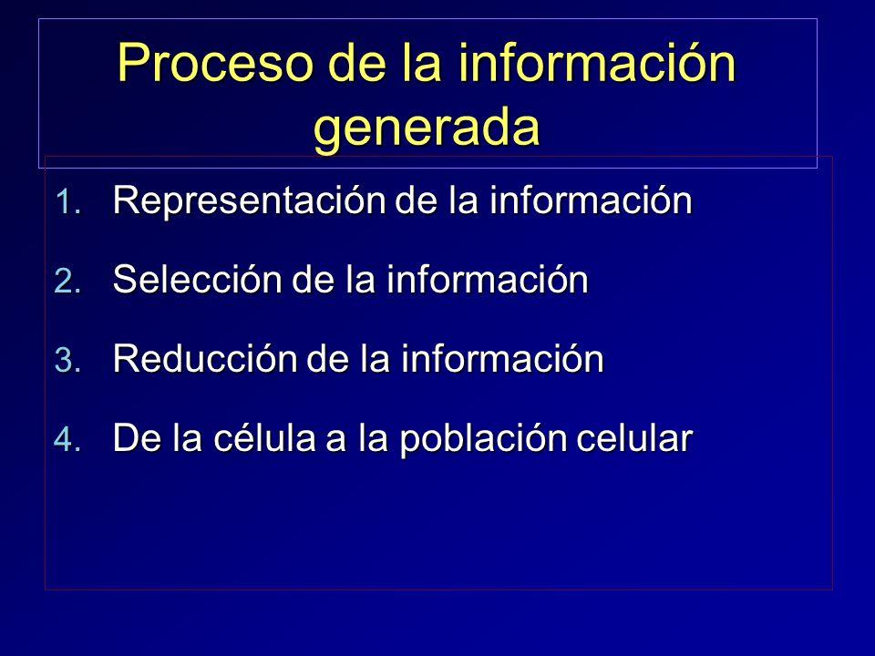Proceso de la información generada