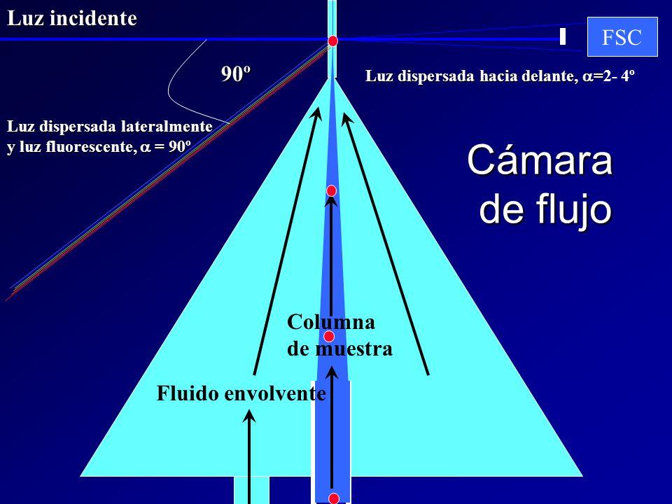 Cámara de flujo Luz incidente FSC 90º Columna de muestra