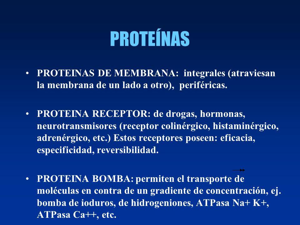 PROTEÍNAS PROTEINAS DE MEMBRANA: integrales (atraviesan la membrana de un lado a otro), periféricas.