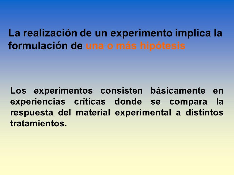 La realización de un experimento implica la formulación de una o más hipótesis