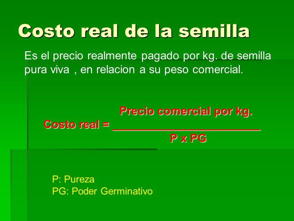 Costo real de la semilla