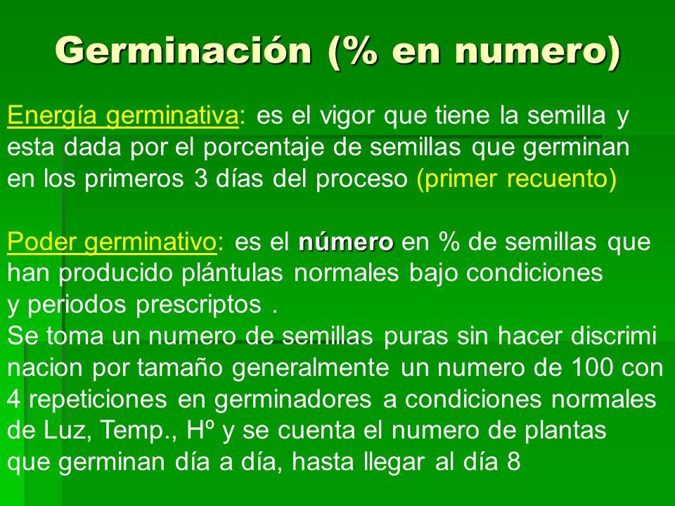 Germinación (% en numero)