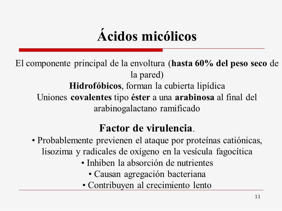 Ácidos micólicos Factor de virulencia.