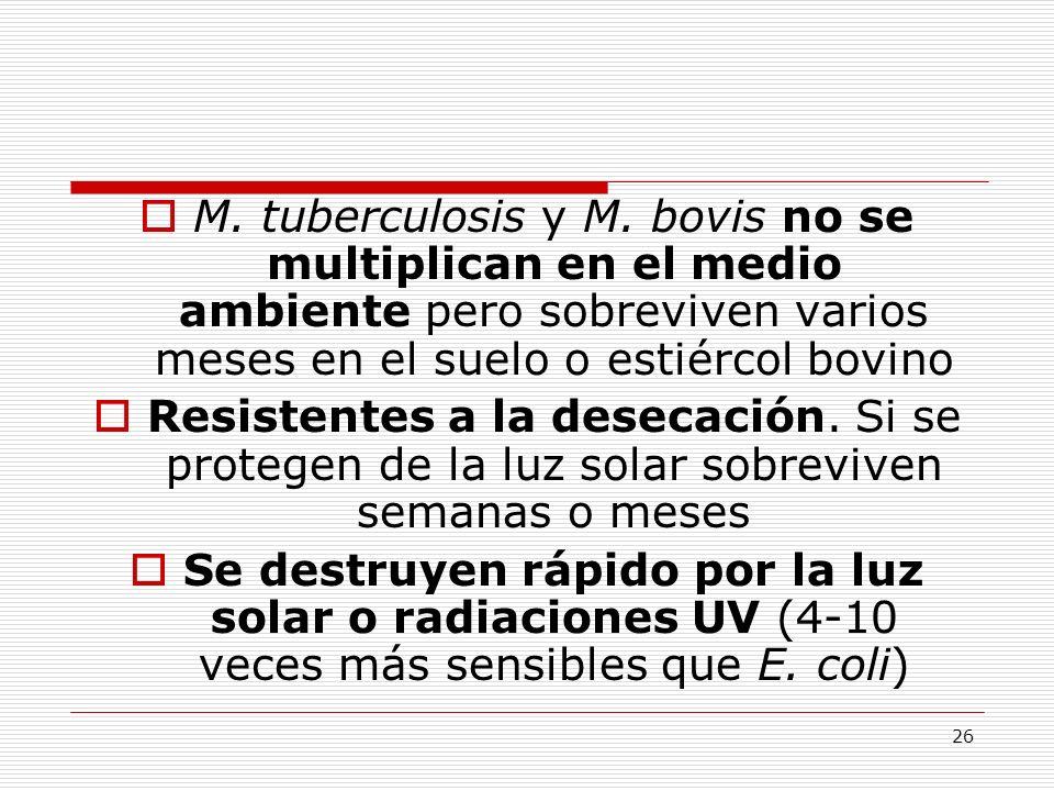 M. tuberculosis y M. bovis no se multiplican en el medio ambiente pero sobreviven varios meses en el suelo o estiércol bovino