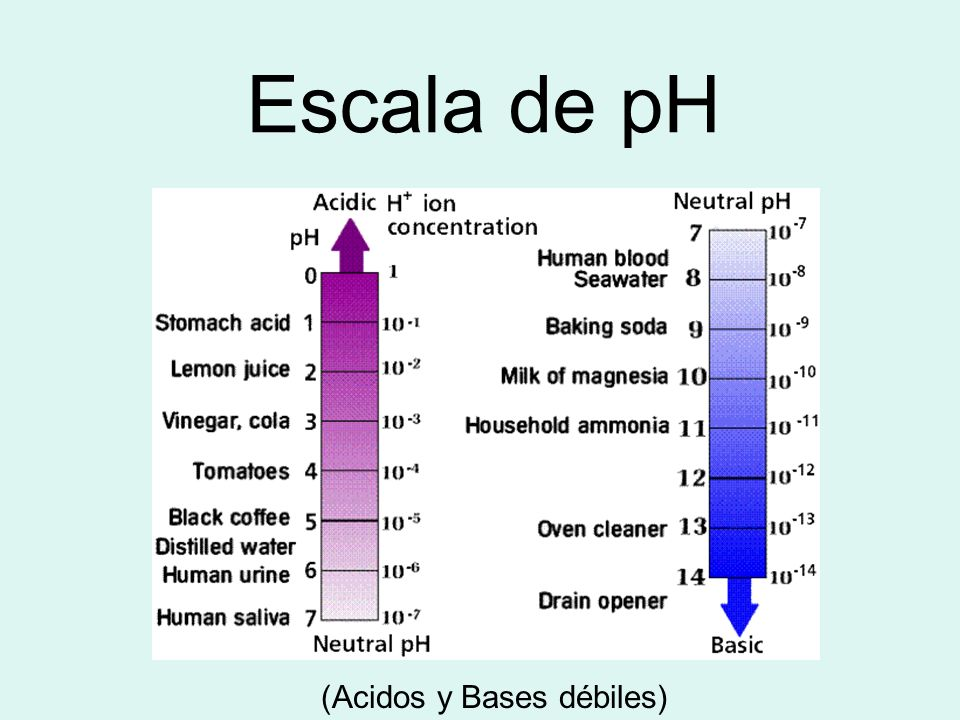 (Acidos y Bases débiles)