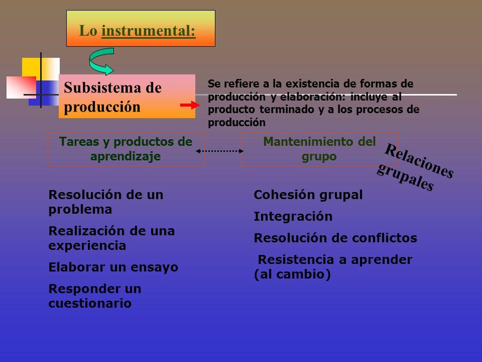 Tareas y productos de aprendizaje Mantenimiento del grupo