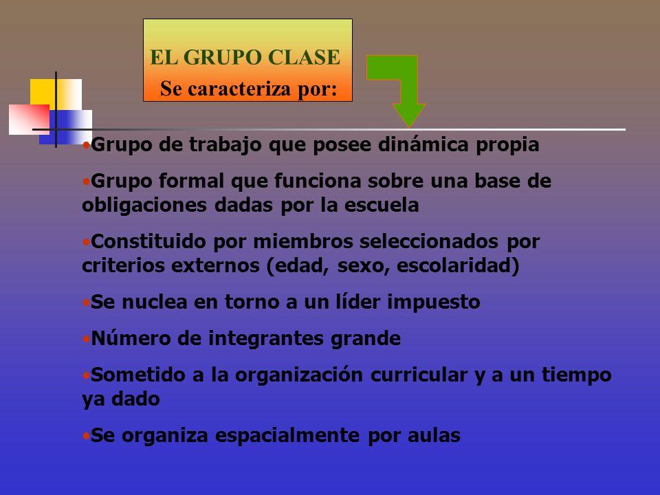 EL GRUPO CLASE Se caracteriza por:
