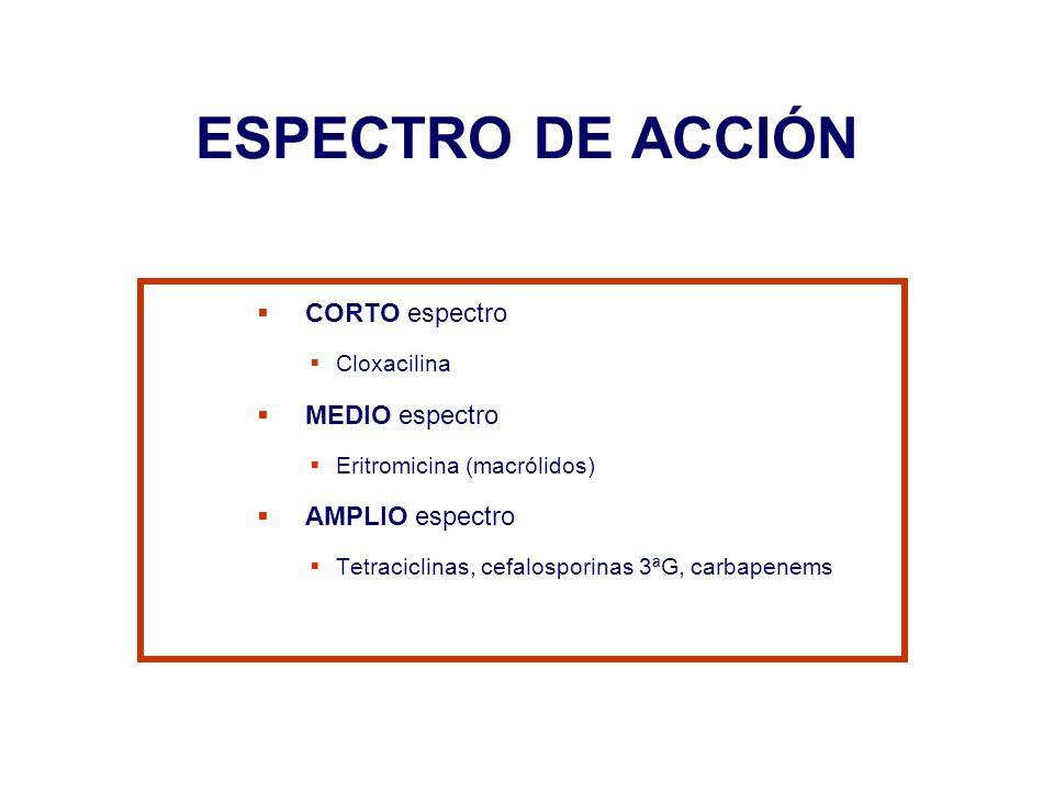 ESPECTRO DE ACCIÓN CORTO espectro MEDIO espectro AMPLIO espectro