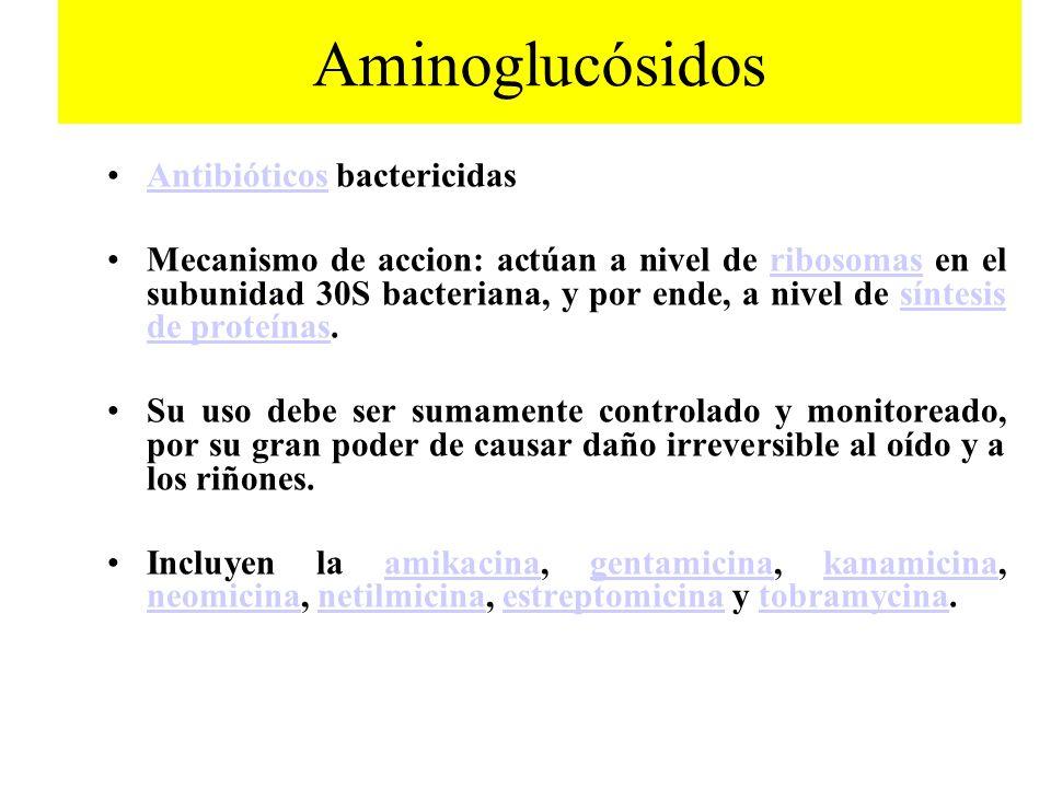 Aminoglucósidos Antibióticos bactericidas