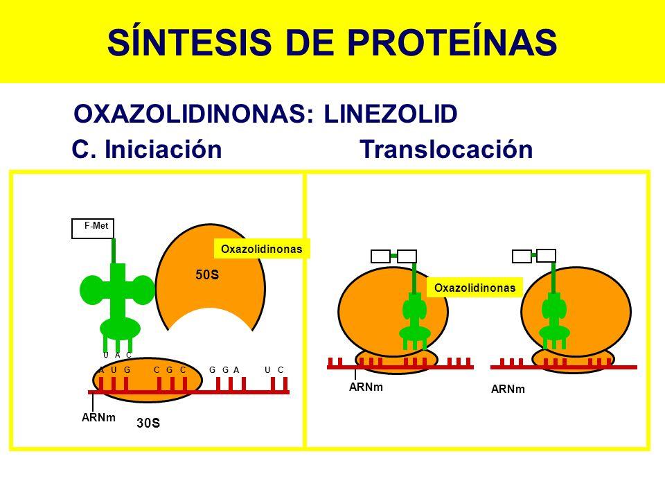 SÍNTESIS DE PROTEÍNAS OXAZOLIDINONAS: LINEZOLID